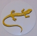 Salamander Sticker